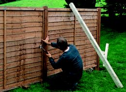 How to put up a panel fence   Ideas & Advice   DIY at B&Q